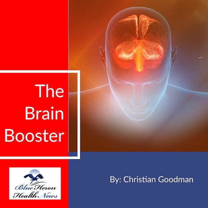 The Brain Booster Program eBook