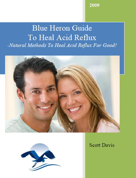 Blue Heron Guide to Healing Acid Reflux