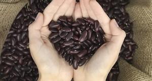 Health Benefits Beans