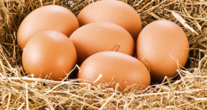 Cholesterol and Eggs: the Truth Revealed!