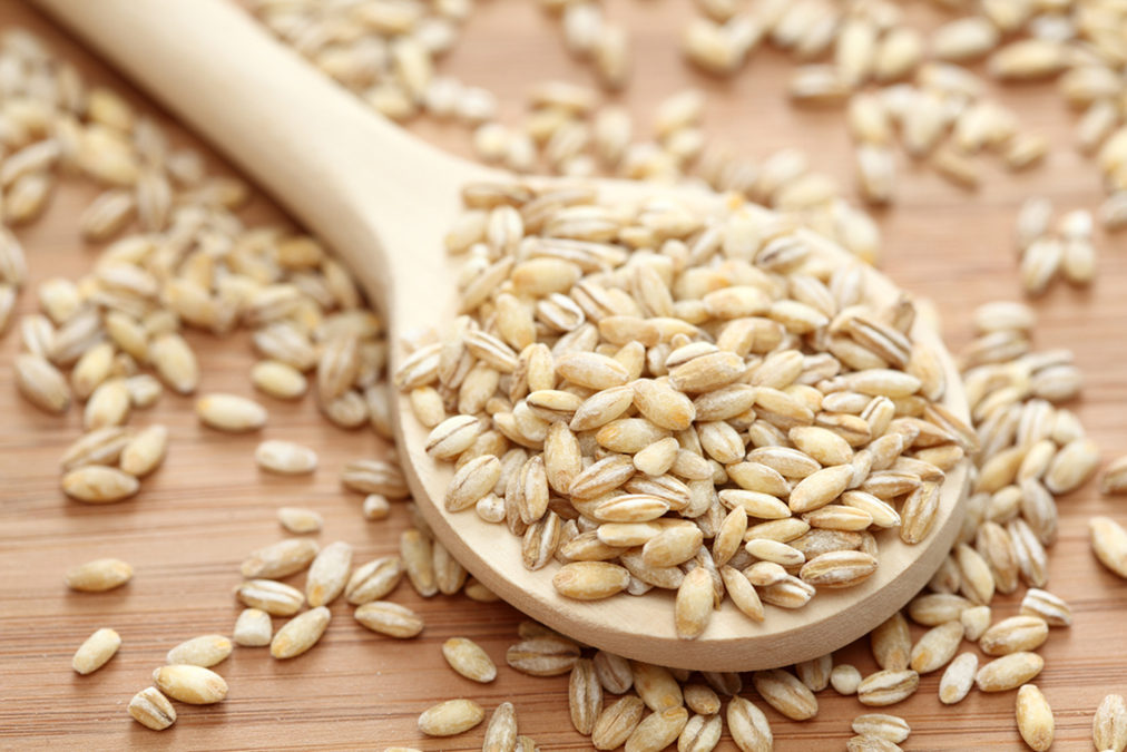 Cholesterol Lowered With This Common Animal Feed