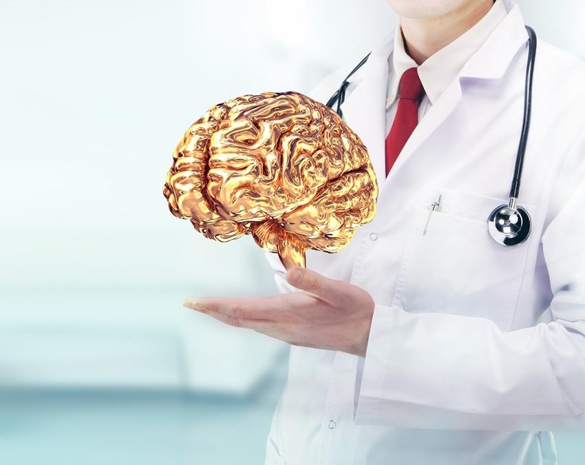 What Do the Brains of Vertigo Sufferers Look Like
