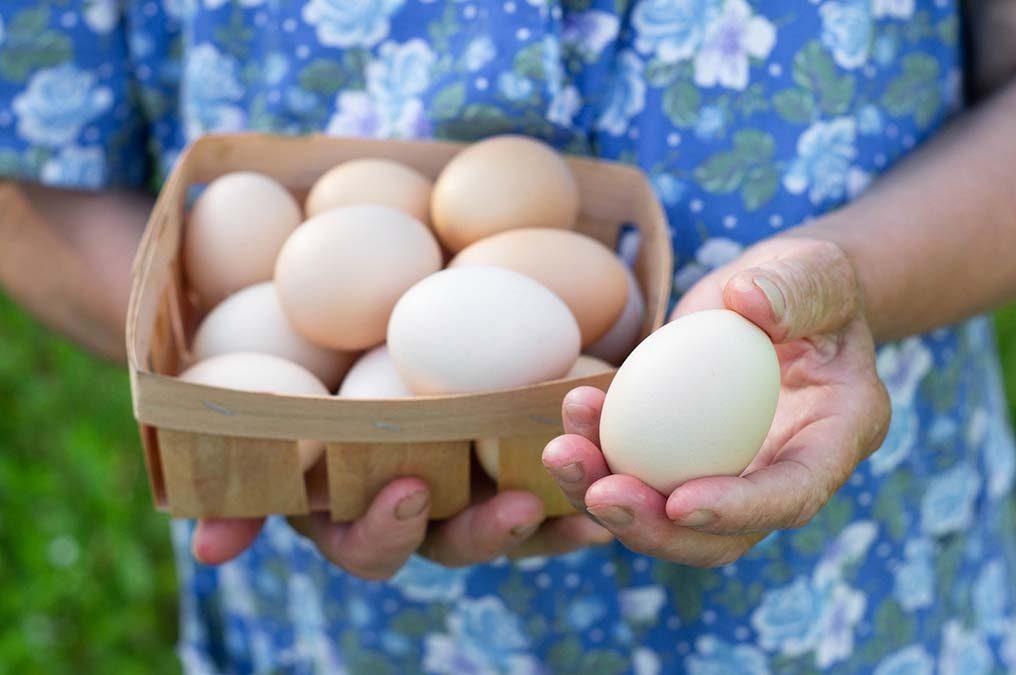 Do Eggs Raise Cholesterol Levels?