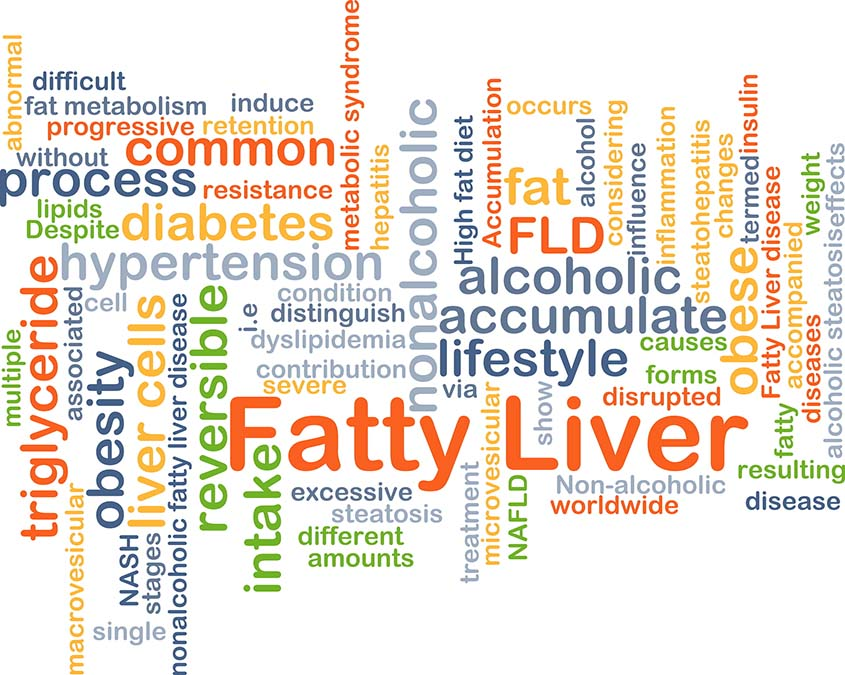 Non-Alcoholic Fatty Liver Cured With This Protein