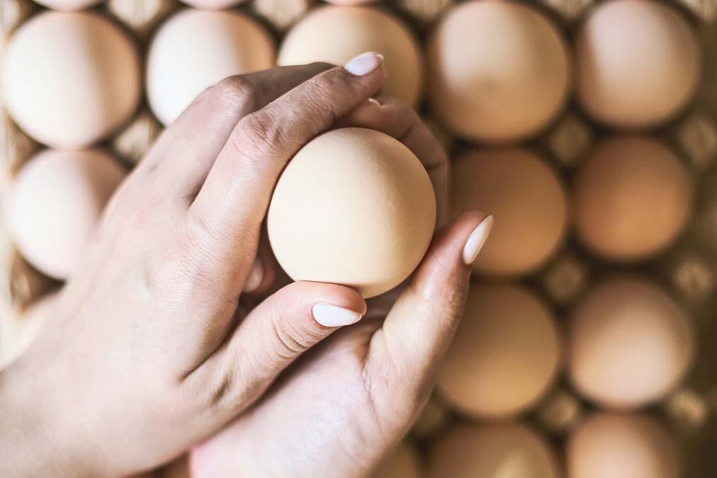 Eggs And High Cholesterol – Myth Buster