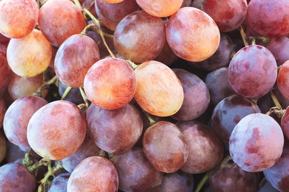 Tasty Fruit Cures High Blood Pressure