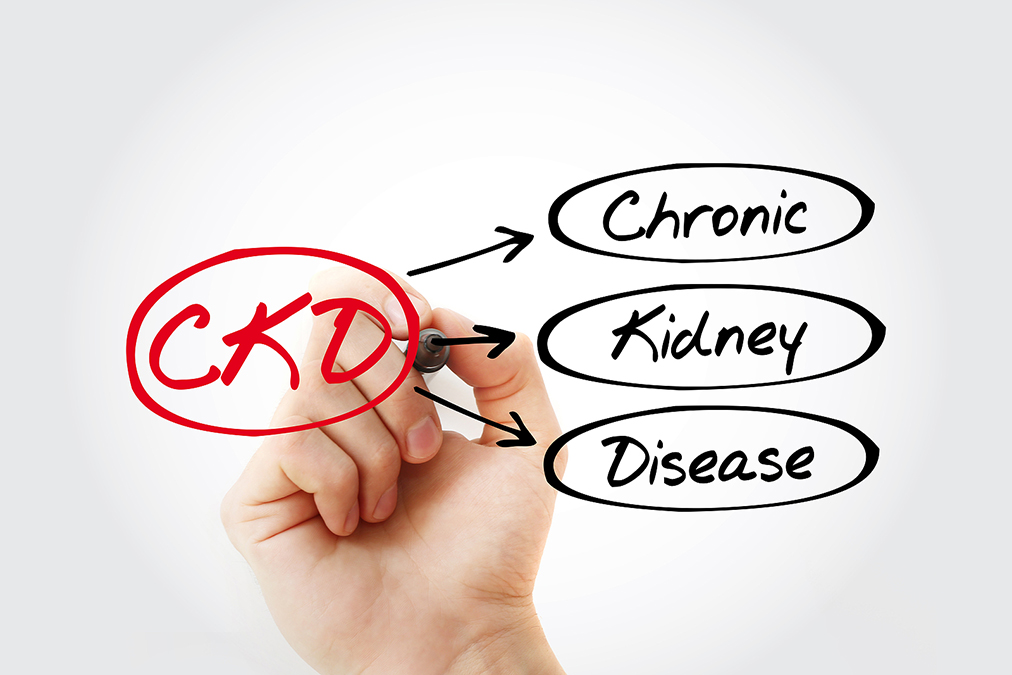 Weird Cause of Chronic Kidney Disease